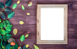 Empty wooden frame on brown wood surface among green and yellow Stock Image