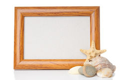 Empty wooden frame with shells Royalty Free Stock Image