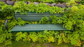 Bench Covererd With Flowers stock photography