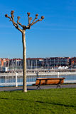 Empty wooden park bench with Marina View Royalty Free Stock Images