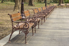 Empty wooden park benches Stock Image