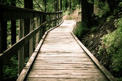 Wooden hiking path in the park Royalty Free Stock Photography
