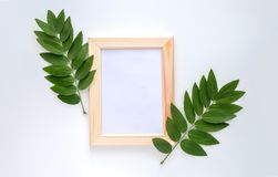Empty wooden photo frame mock-up with green leaves around,  on white background. Stock Photography