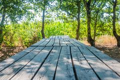 Empty wooden picnic table by the corne field stock images