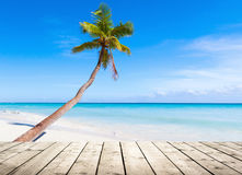 Empty wooden pier on Caribbean Sea Royalty Free Stock Image