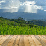 empty wooden plank with Terraced rice field on Mountain backgrou Stock Image