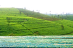 Empty wooden planks with blur tea plantation Stock Photo