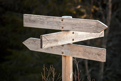 Empty wooden road sign in dark forest Royalty Free Stock Photos
