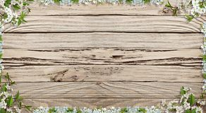 Empty wooden rustic background with spring flowers frame. Rustic wooden backgroung with white spring flowers  and space for your text Royalty Free Stock Images