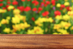 An empty wooden table on the background of blooming tulips. The background is blurred Stock Photo