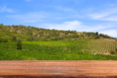 Empty wooden table on the background of vineyards.Blurred background. Royalty Free Stock Images