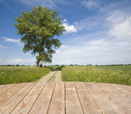 Empty wooden table in the countryside Royalty Free Stock Photo