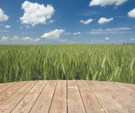 Empty wooden table in the countryside Royalty Free Stock Photos