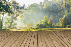 Empty wooden table with forest landscape Royalty Free Stock Photography