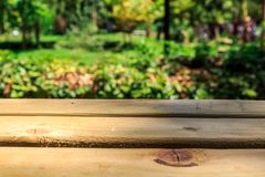 Emptry Wooden Table in Nature Royalty Free Stock Photo