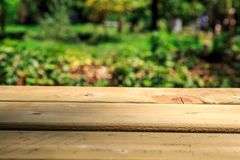 Emptry Wooden Table in Nature Stock Images