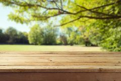 Empty wooden table over autumn background stock photos