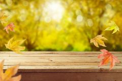 Empty wooden table over autumn nature bokeh stock images