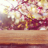 Empty wooden table over spring flowers tree background for product montage Royalty Free Stock Photo