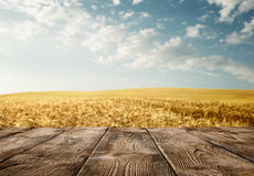 Empty wooden table over wheat field Royalty Free Stock Photography
