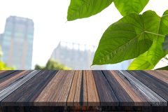 Empty wooden table or plank with big green leaf and city tower on background for product display. Copy space available royalty free stock image
