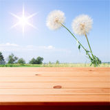 Empty wooden table for product montage stock images