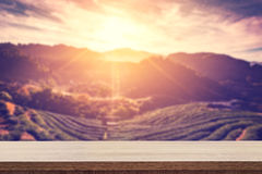 Empty wooden table for product placement or montage and blurred. Tea field and sunrise vintage Stock Photo