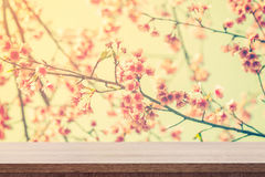 Empty wooden table for product placement or montage and pink blo. Ssom with vintage toned Stock Photos