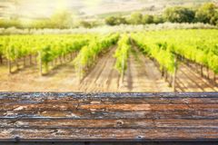 Empty wooden table top, sunny vineyard background, ready to use for display of your products. Empty wooden table top, sunny vineyard background, ready to use for Royalty Free Stock Image
