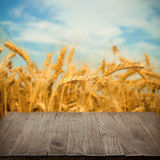 Empty wooden table with wheat field on background stock photos