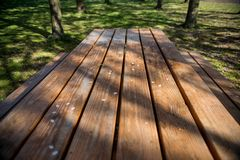 Empty wooden table with white petals. In park, copenhagen royalty free stock photo