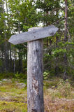 Empty wooden track pointer in the forest in summer sunny day Stock Photo