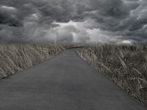 Empty World. A dark and dramatic post-apocalyptic background scene Royalty Free Stock Photo
