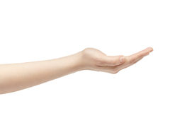 Empty young female hand to hold something Stock Photography
