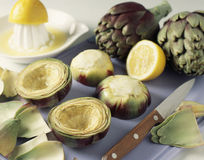 Emptying the artichoke bases Stock Images