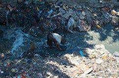 Empujes del pobre hombre en la descarga de basura Imagen de archivo libre de regalías
