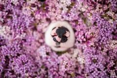 Empujes divertidos de la nariz de perro fuera de las flores imagen de archivo
