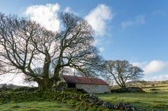 emsworthy Scheune dartmoor Devon England Großbritannien Lizenzfreie Stockfotos