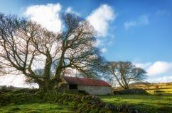 emsworthy Scheune dartmoor Devon England Großbritannien Lizenzfreies Stockfoto
