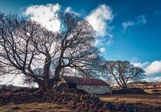 emsworthy Scheune dartmoor Devon England Großbritannien Lizenzfreies Stockbild