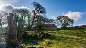 emsworthy Scheune dartmoor Devon England Großbritannien Stockbild