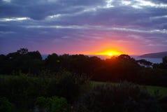 Emu Bay Morning Stock Image