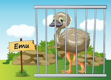 Emu in cage. Illustration of a emu in cage and wooden board Royalty Free Stock Photo
