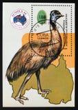 Emu Dromaius novaehollandiae, Philatelic Exhibitions serie, Cuba circa 1984. MOSCOW, RUSSIA - AUGUST 29, 2017: A stamp printed in Cuba shows Emu Dromaius Stock Photography