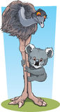Emu and Koala. A cartoon emu and koala have a cuddle vector illustration