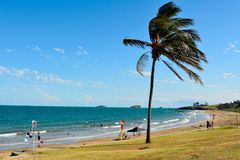 Beach in Emu Park, QLD. Emu Park, Queensland, Australia - December 27, 2017. Beach in Emu Park, QLD, with people, palm tree and surf rescue flags royalty free stock photos
