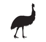 Emu  Silhouette. Black Icon Stock Photography