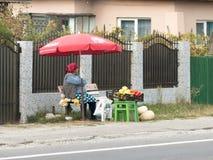 En äldre kvinna säljer grönsaker och nya frukter på vägrenen i en förort av Bucharest, Rumänien Royaltyfri Bild