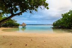 En älskvärd liten tidvattens- pöl i en liten vik på liten franska Kay, Roatan, Honduras Royaltyfri Fotografi