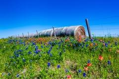 En äng med runda Hay Bales och nya Texas Wildflowers Arkivfoto